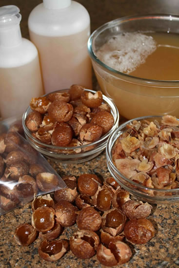 Soapnuts Natural Laundry Detergent Soapnuts Online India